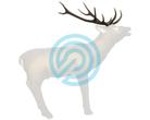 SRT Target 3D Elk Horns
