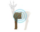 SRT Target 3D Roe Deer Hit-Section