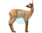 SRT Target 3D Roe Deer VSE Female