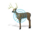 Delta McKenzie Target 3D RiverBottom Challenger Buck