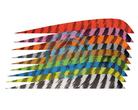 Gateway Feather Full Length RW Barred