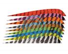 "Gateway Feather 5"" Parabolic RW Barred"