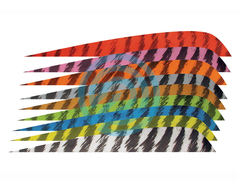 "Gateway Feather 4"" Parabolic RW Barred"