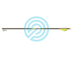 Gold Tip Arrow Fletched Pro Hunter
