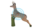Eleven Target 3D Leaping Deer with Insert & Horns