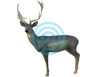 SRT Target 3D Fallow Deer Melas
