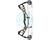 Hoyt Compound Bow Carbon RX-4 Redwrx Turbo 2020