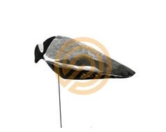 Sillosocks Pigeon
