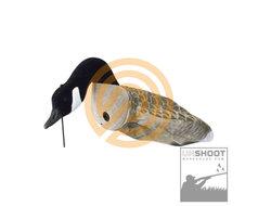 Sillosocks Canada Goose Flocksox