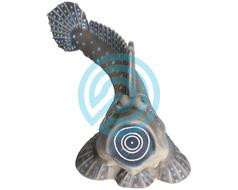 SRT Target 3D Saltafango Mudskipper