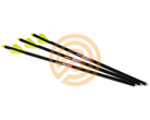 "Excalibur Bolts Carbon Quill 16.5"" Illuminated"