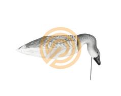 Sillosocks Juvy Snow Goose Feeder