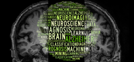 A Machine learning neuroimaging challenge for automated