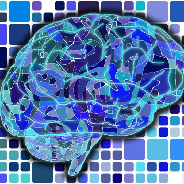Confused student EEG brainwave data | Kaggle