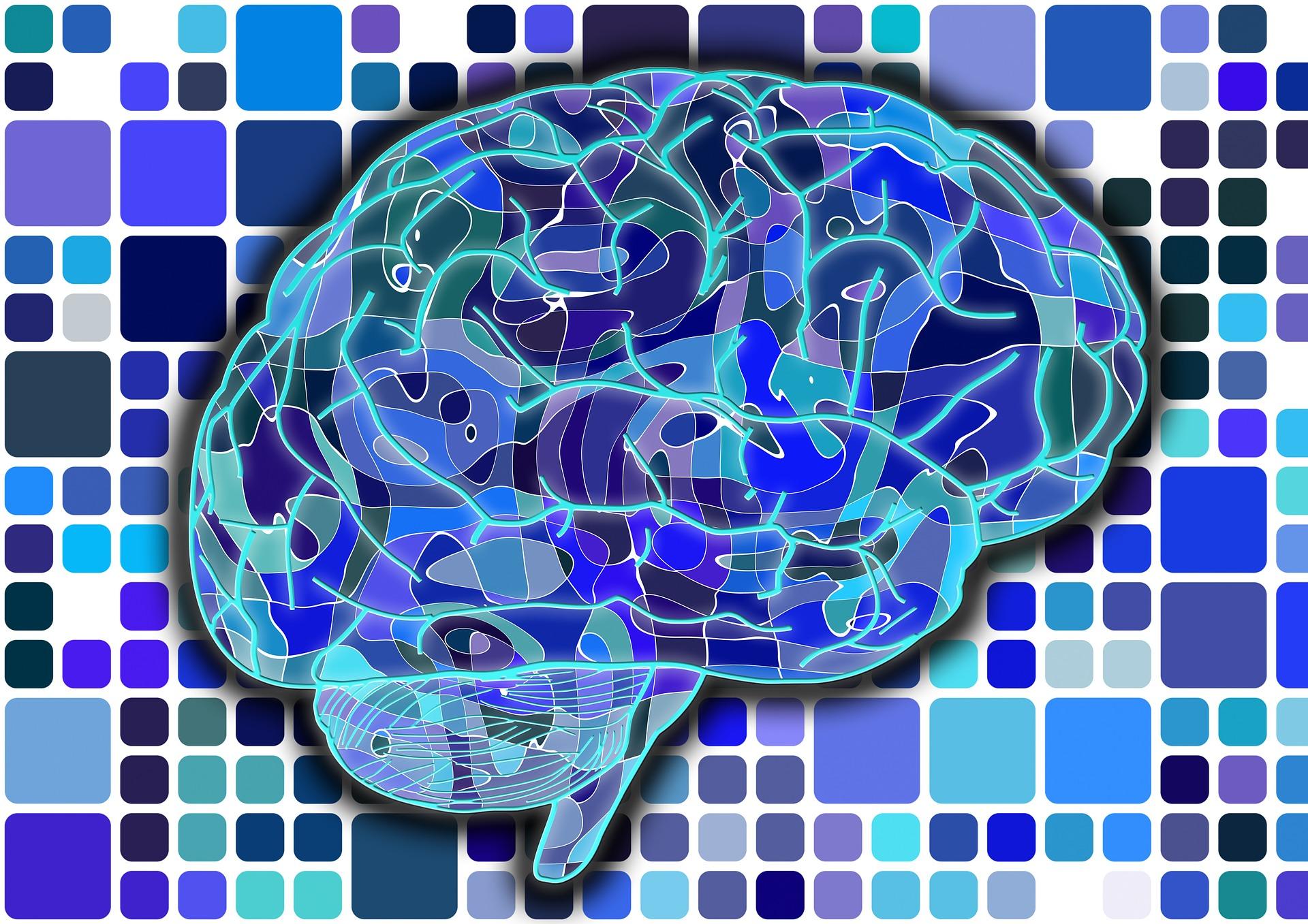 Confused student EEG brainwave data   Kaggle