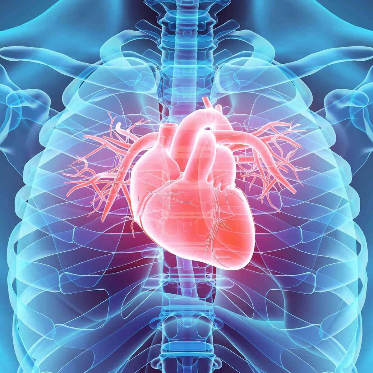 Cardiovascular Disease dataset | Kaggle