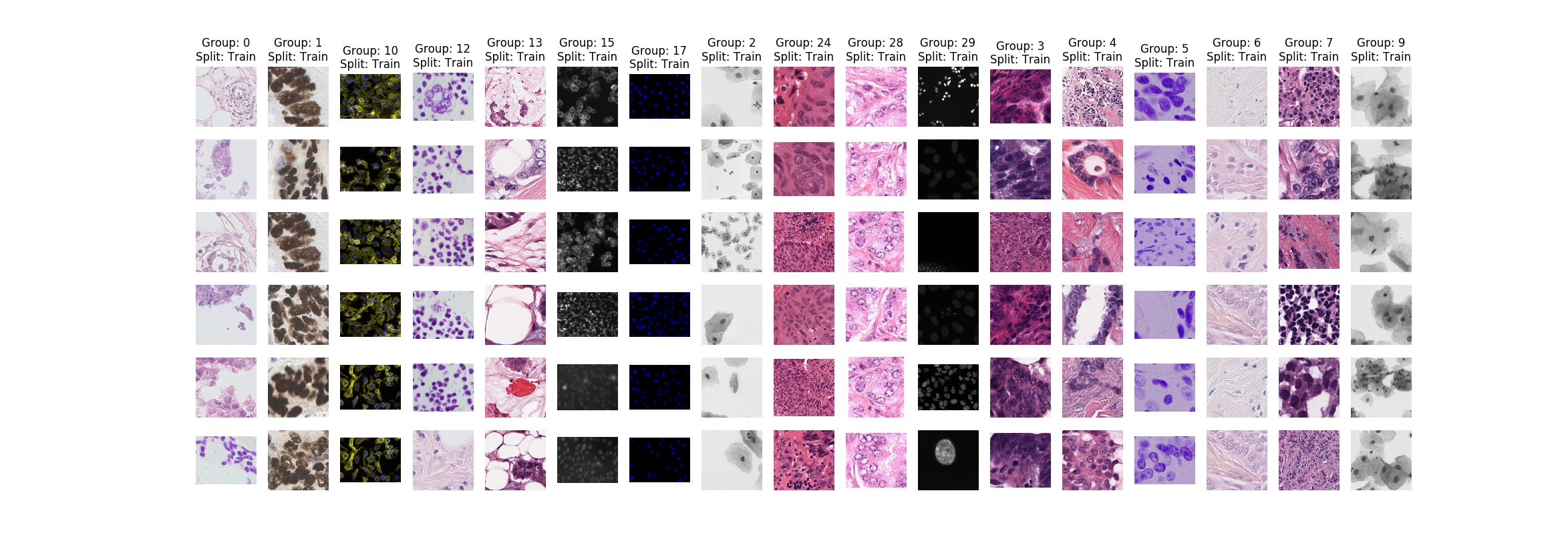 Nuclei Segmentation In Microscope Cell Images | Kaggle