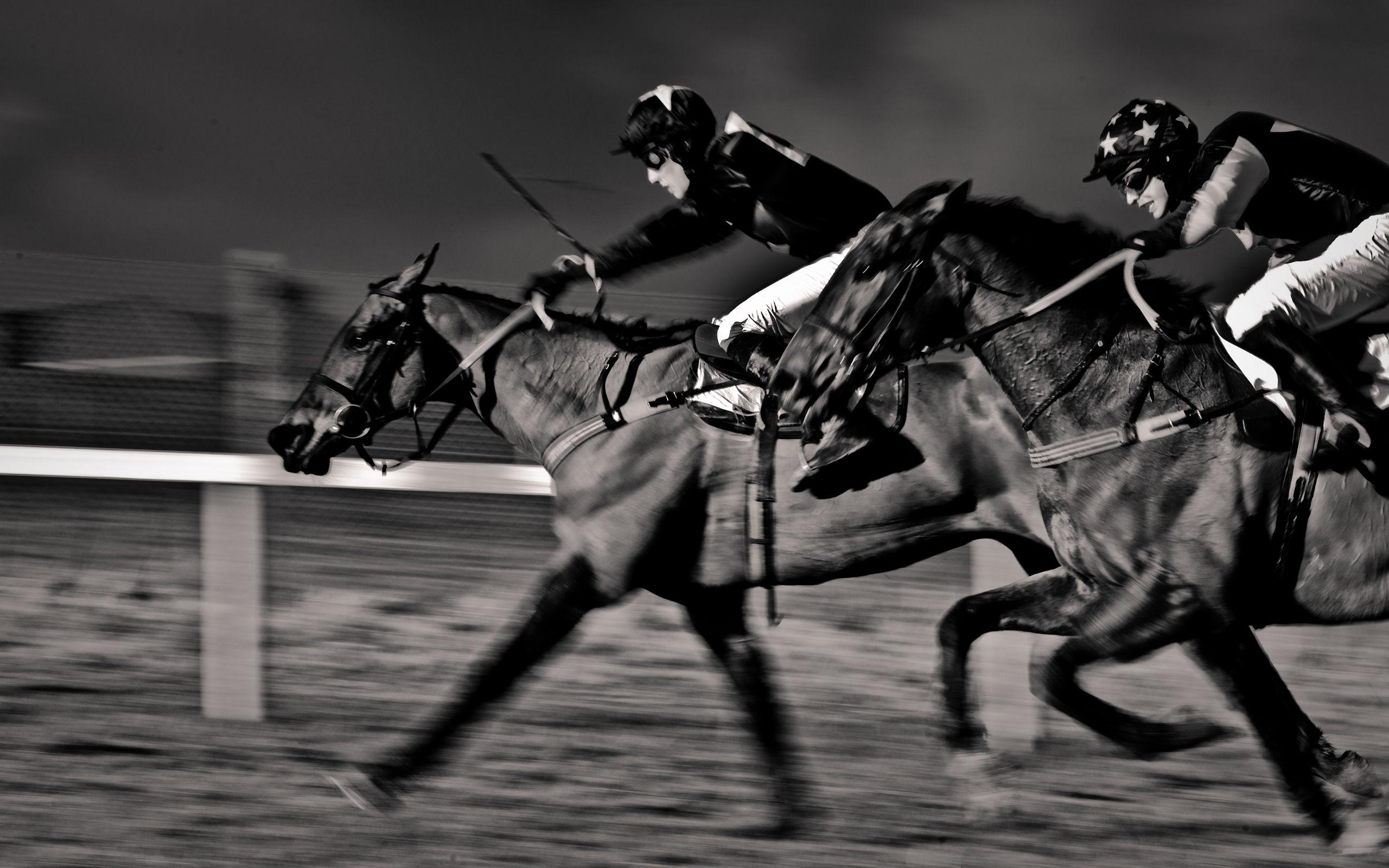 Horse Racing Dataset for Experts (Hong Kong) | Kaggle
