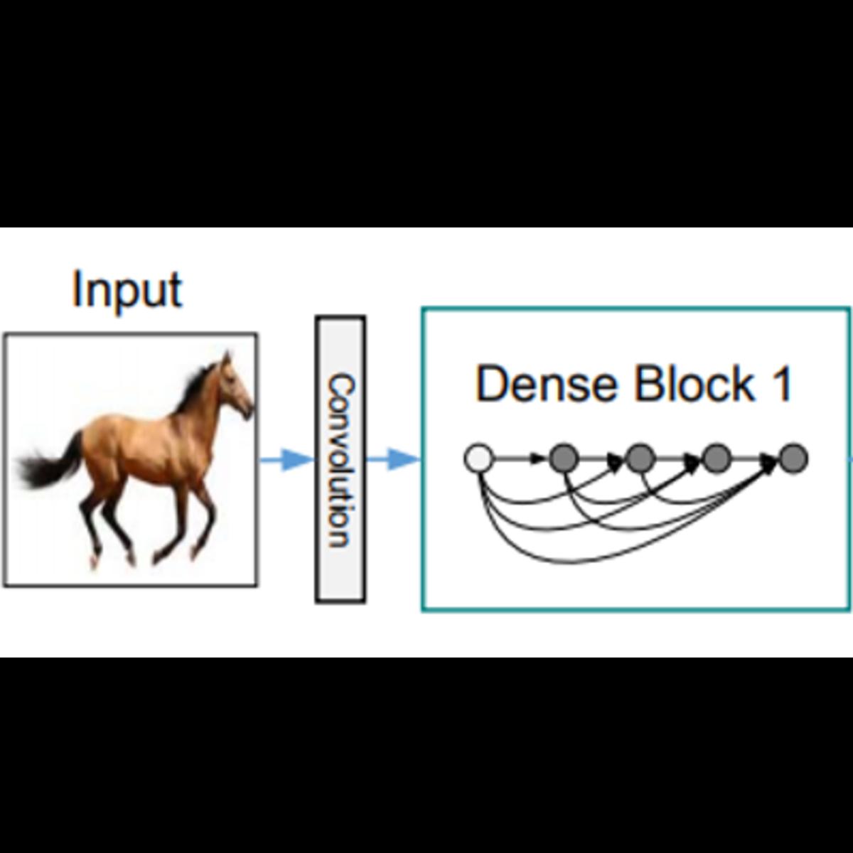 DenseNet-121 | Kaggle
