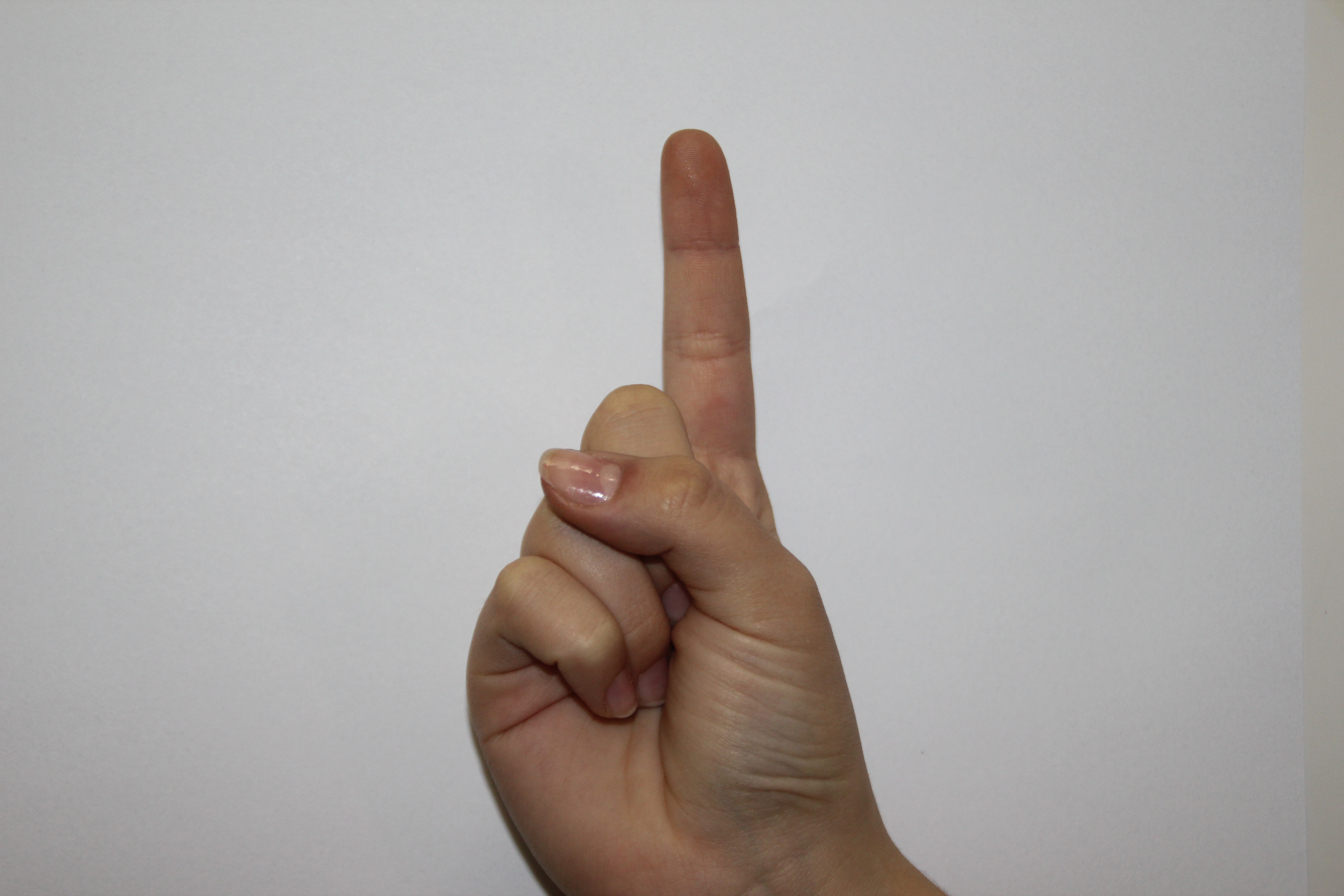 Sign Language Digits Dataset | Kaggle