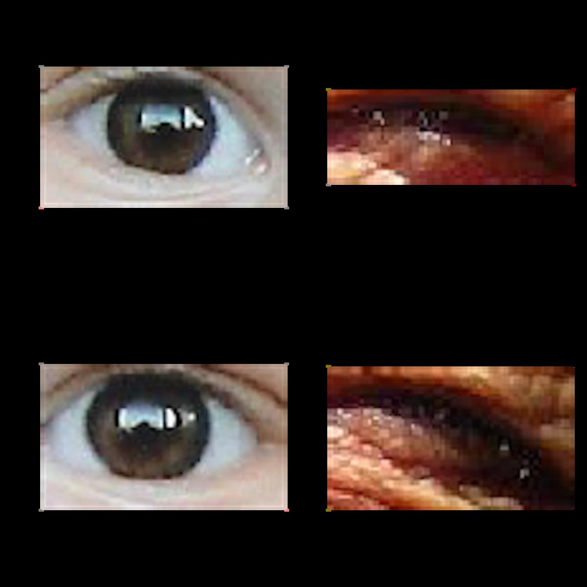 Helen Eye Dataset | Kaggle