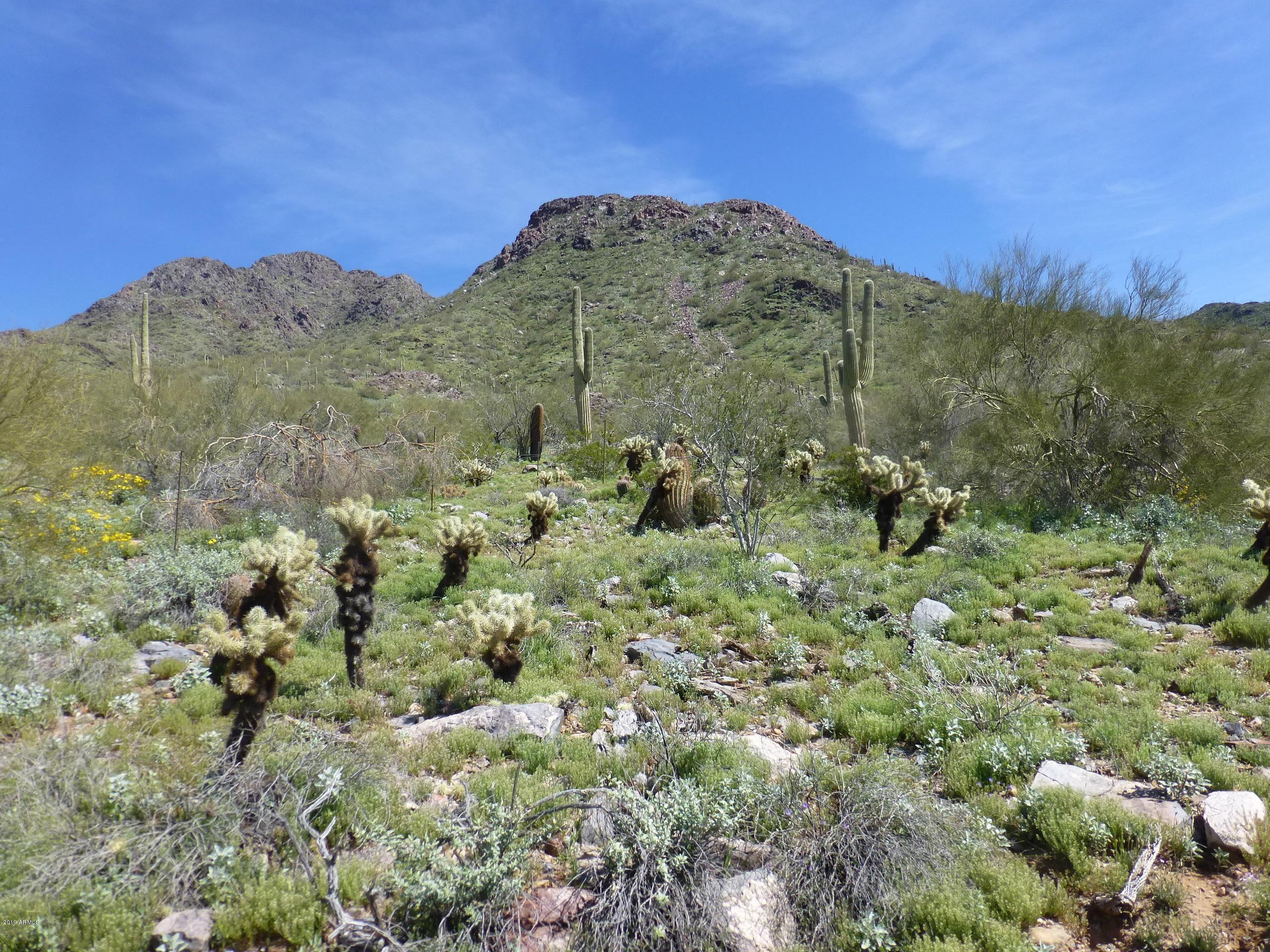 11137 E Canyon Cross Way Scottsdale, AZ