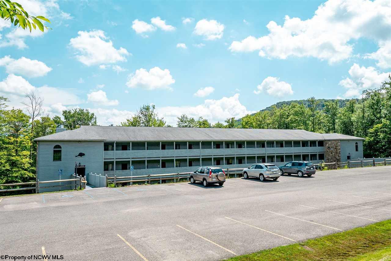 98 Ash Lodge Ct Davis, WV
