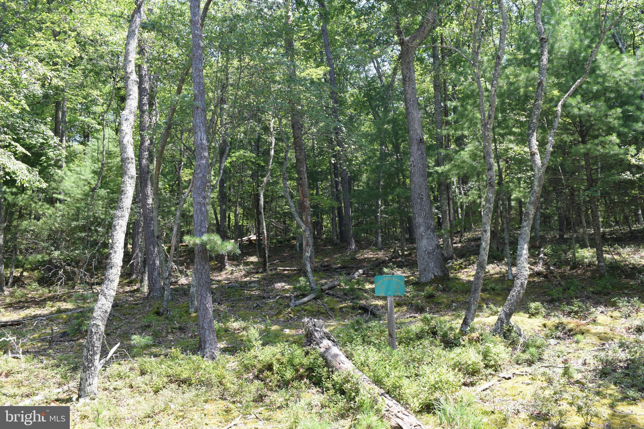 8 Tall Pine Dr Sugar Grove, WV
