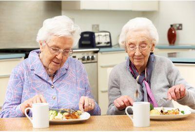 高齢者向け配食サービス