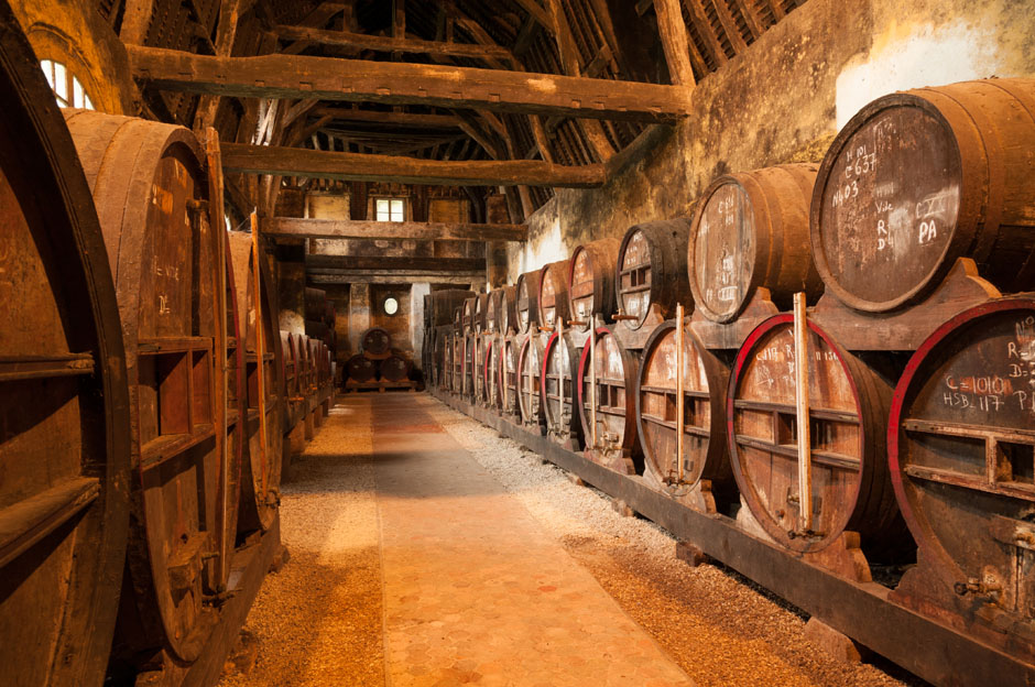 Big Apples and bees along Normandy's cider trail