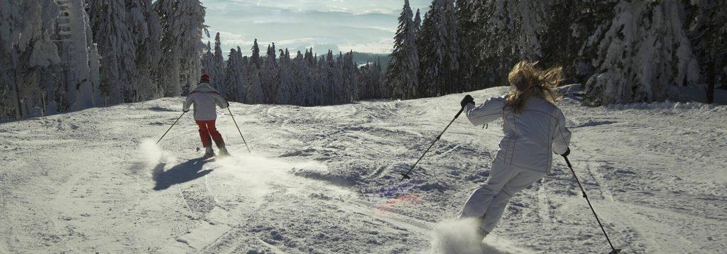 Snow Ski