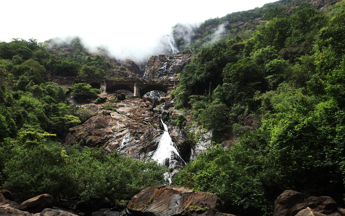 Dudhsagar Waterfalls with hard green forest, Goa