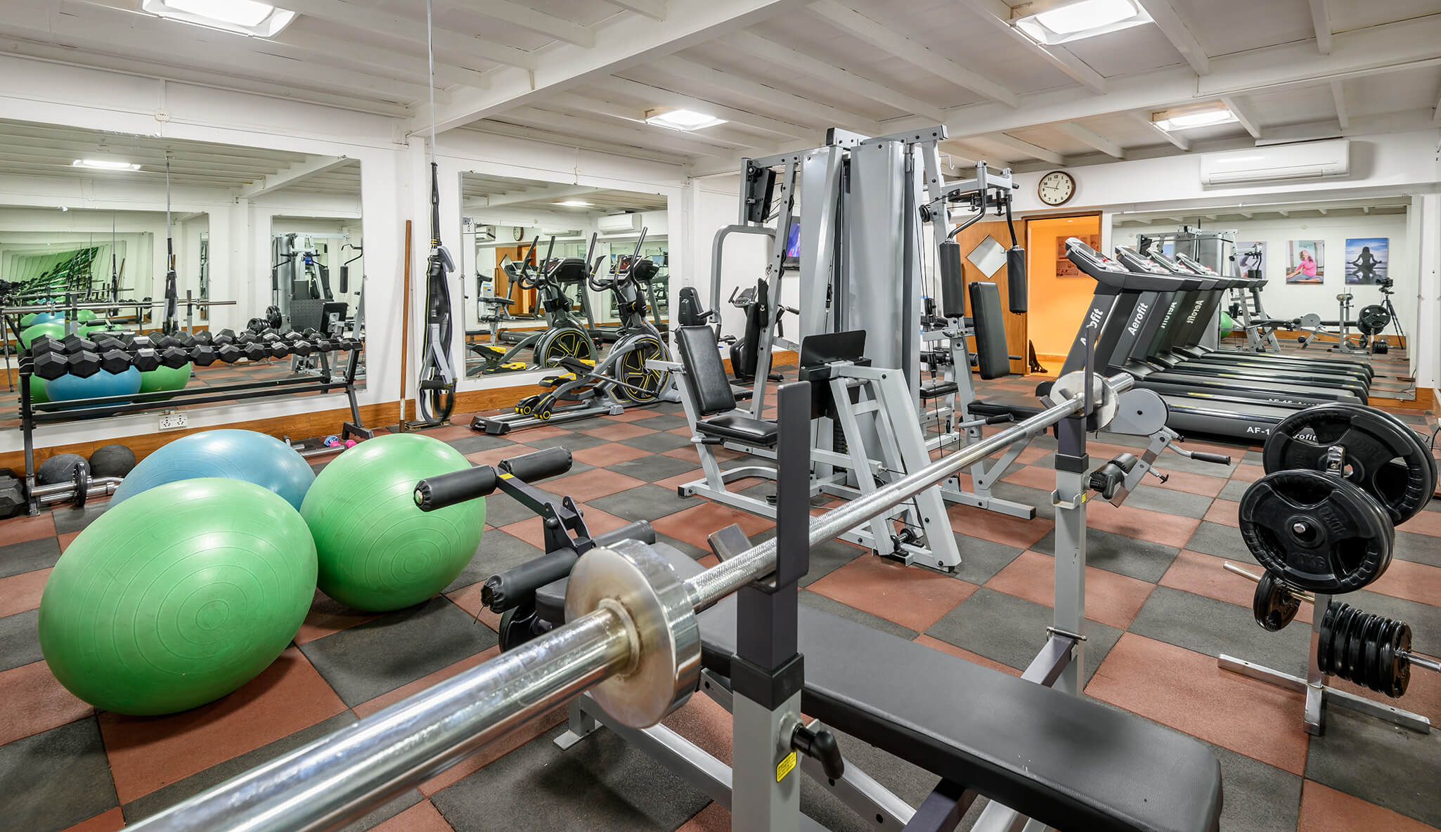 great exercise of luxury hotel Karma Royal Haathi Mahal Gym