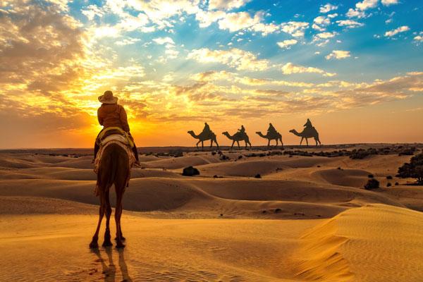 Karma Golden Camp Camel Rides