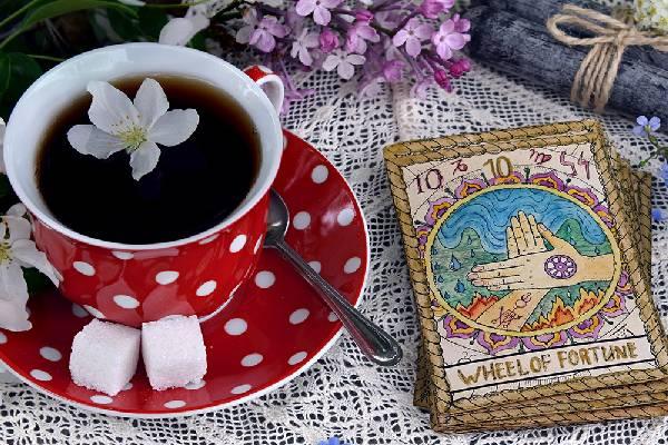 Tea & Tarot With Vasna Shalom