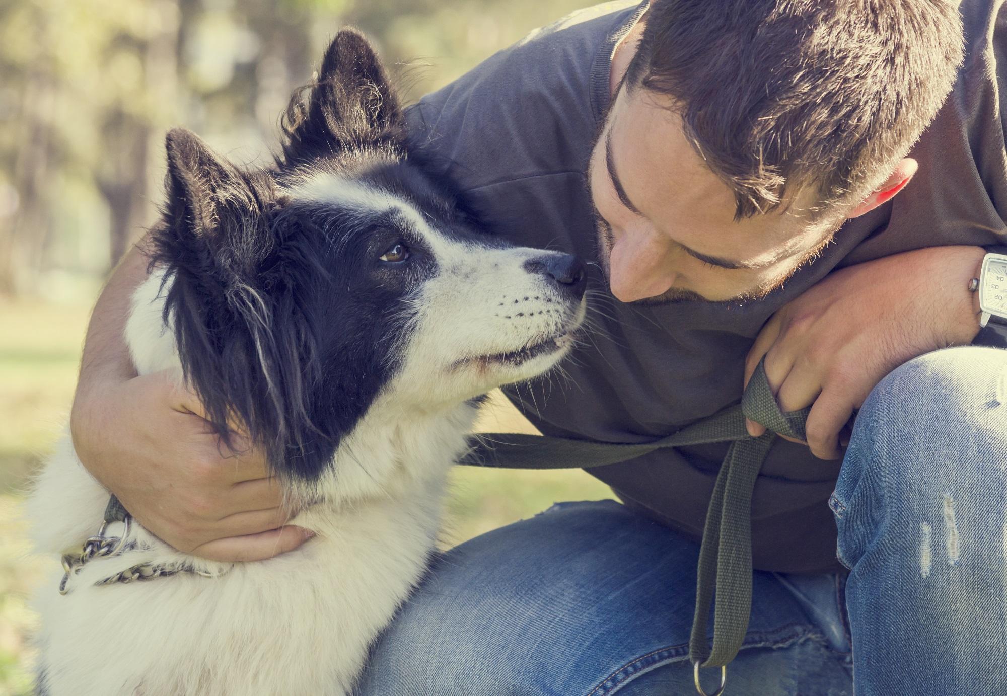 Tosset med hund Generelt om hunde