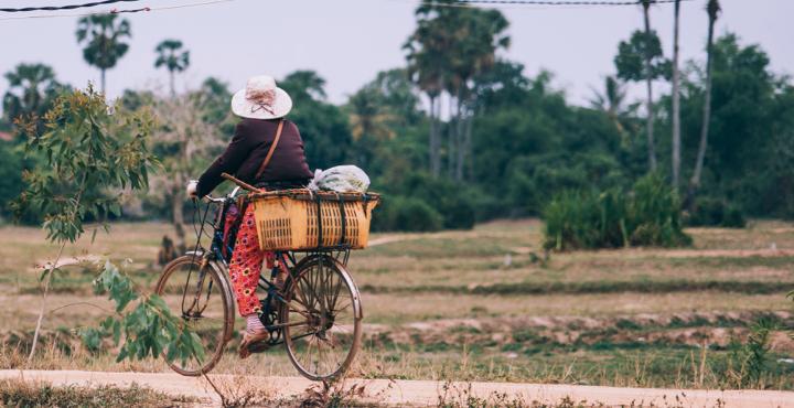 Interactive Repository for Development Reports in Cambodia