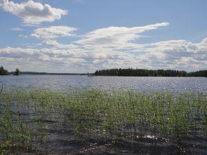 Lohkottava rantatonttialue Anttila 16-402-9-20, Asikkala