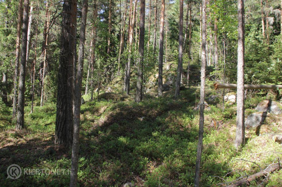 Lohkottava 10,72ha rantatonttialue Anttila 16-402-9-20, Asikkala
