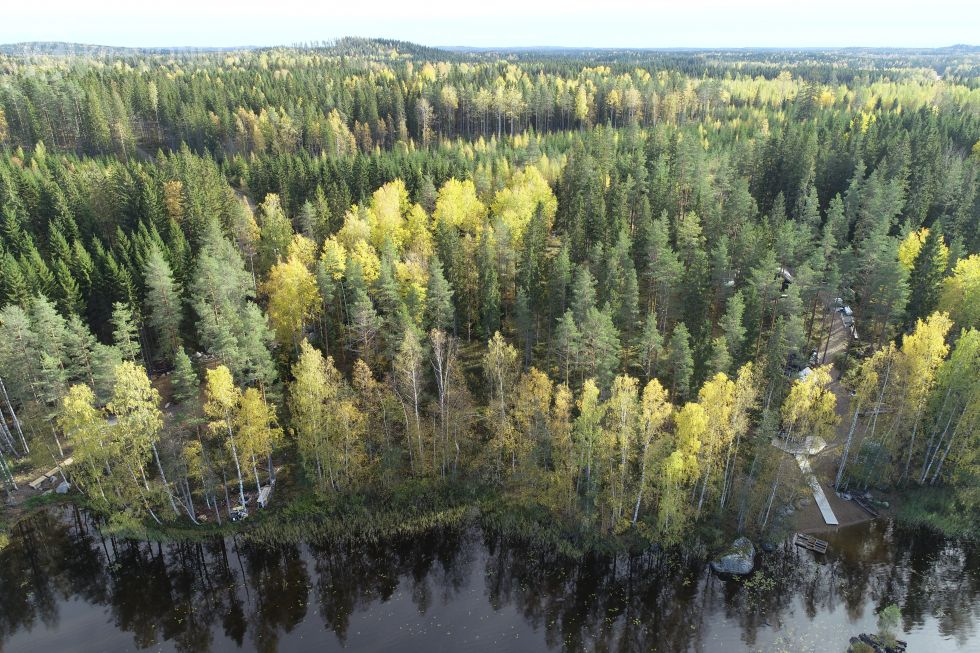 Rantatontti 5100m2 Hartola Pimeäpirtti, nro 5 / kortteli 1