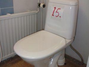 WC-istuin  (15)