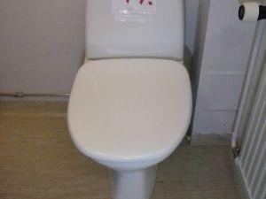 WC-istuin  (47)
