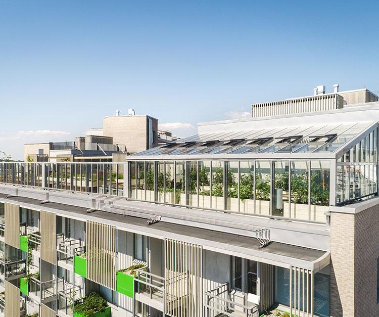 Jätkäsaaren viherkatot, yksi Kehittyvä kerrostalo -hankeen rakennusprojekteista.