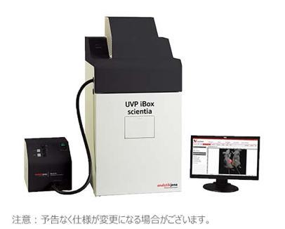 iBox Sciential 小動物イメージングシステム