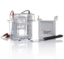 XCell SureLock™ Mini-Cell and XCell II™ Blot Module