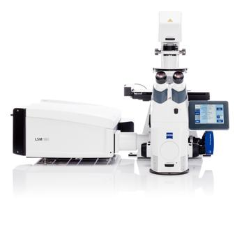 ZEISS LSM 9 Family with Airyscan 2