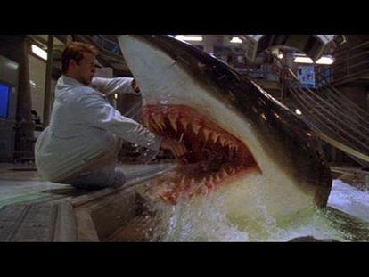 Top 10 Scariest Movie Shark Attacks - Video Dailymotion - 00:00-10:24 - Fri  Jun 22 2018 11:20:54 AM