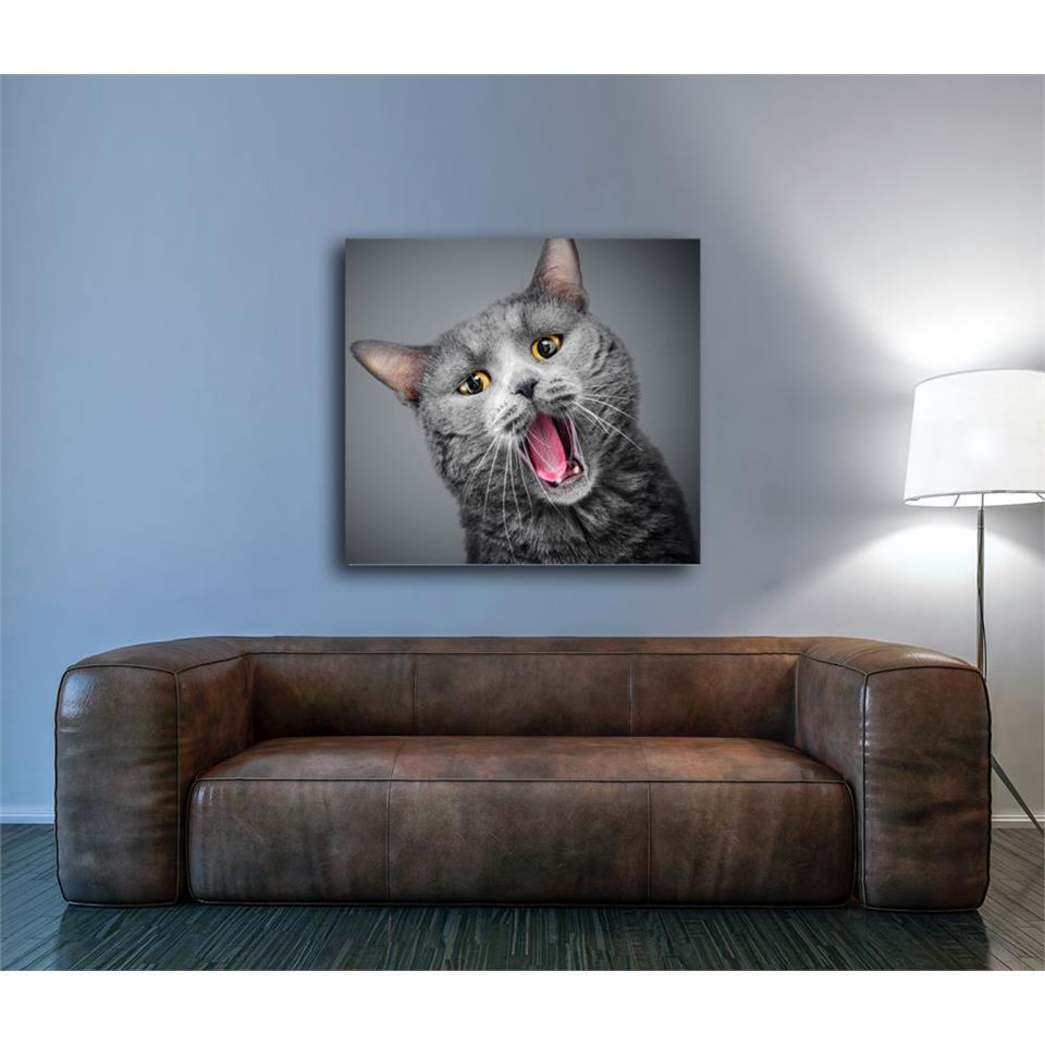 لوحة بتصميم قطة رمادي