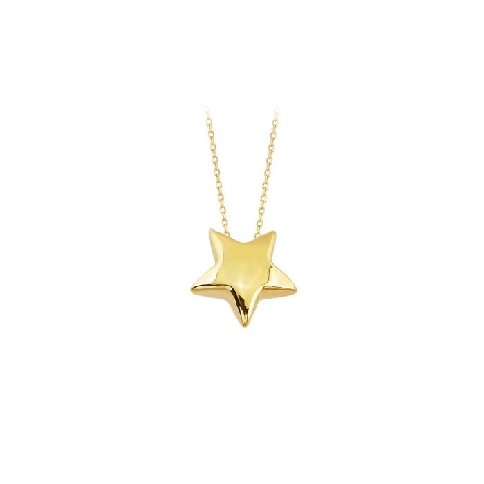 Women's Star Pendant 14 Carat Gold Necklace