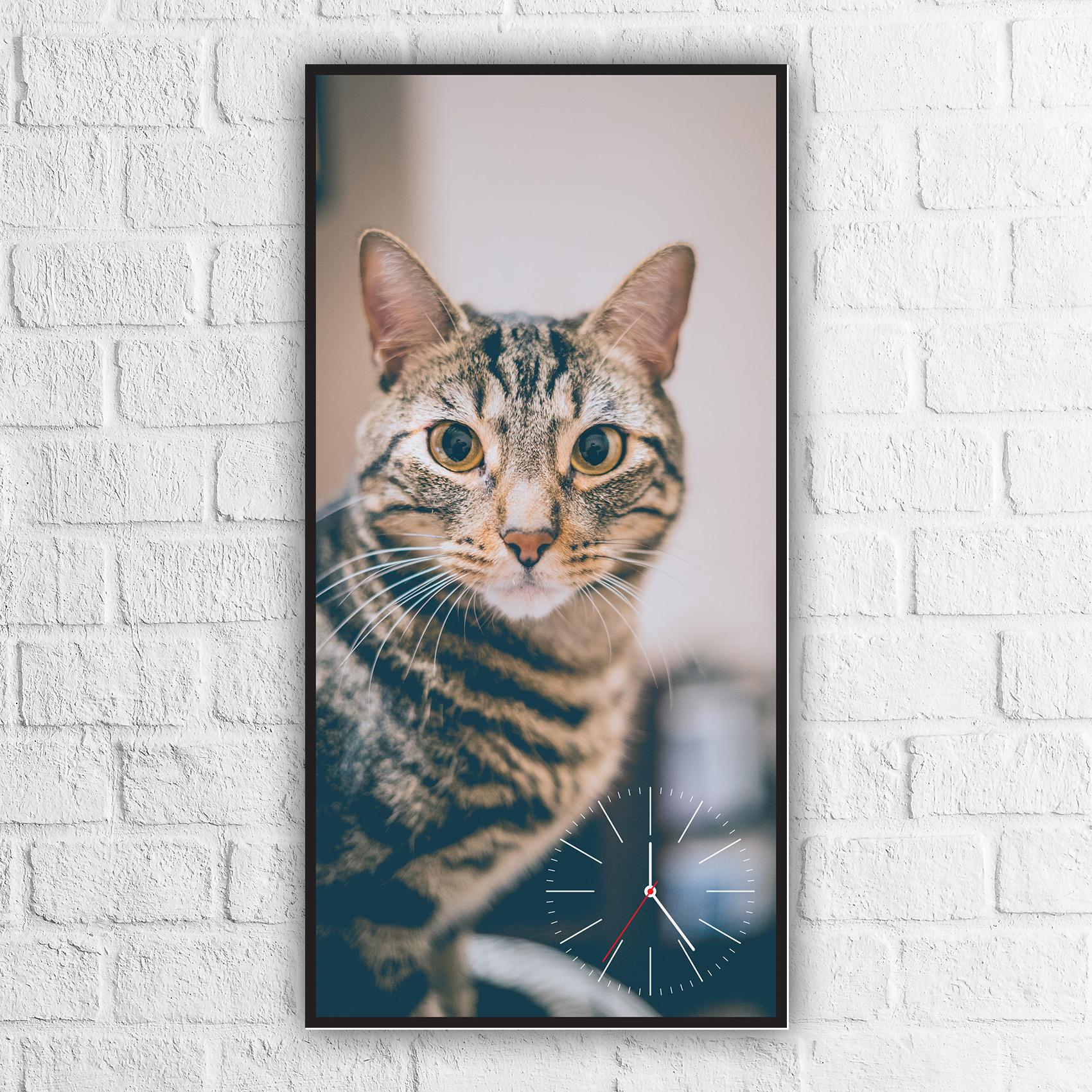 ساعة حائط بلوحة قطة مزخرفة